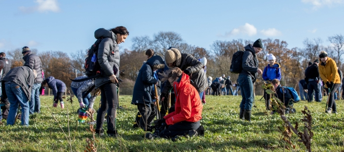 Tree planting event at Heartwood Forest